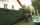 Jardinage, tonte de pelouse, taille de haie à Limeil-Brévannes
